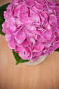 Bouquet pink hydrangeas wooden table closeup Royalty Free Stock Image
