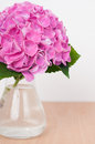 Bouquet pink hydrangeas wooden table closeup Royalty Free Stock Images