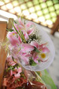 Bouquet pink lilies outdoors Stock Image