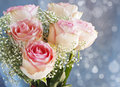 Bouquet of pink roses on background with bokeh Stock Image