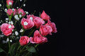 Bouquet of pink roses on black background Stock Photography