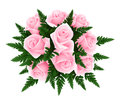 Bouquet of pink roses with fern. Royalty Free Stock Image