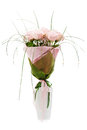 Bouquet from pink roses in white vase Stock Images