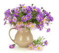 Bouquet of   pink and violet chrysanthemums Royalty Free Stock Photography