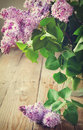 Bouquet of purple lilac selective focus toned image Royalty Free Stock Photography