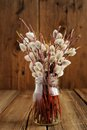 Bouquet of pussy willow twigs in glass jar on wooden background Royalty Free Stock Photo