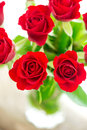 Bouquet of red roses with copy space close up Royalty Free Stock Photo
