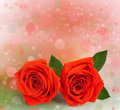Bouquet of red roses with green leaves Royalty Free Stock Image