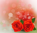 Bouquet of red roses with green leaves on the abstract background bokeh effect Stock Photos