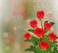 Bouquet of red roses with green leaves on the abstract background bokeh effect Stock Photo