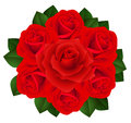 Bouquet of red roses. Vector illustration. Royalty Free Stock Photos