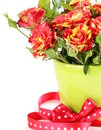 Bouquet of red roses on a white background Royalty Free Stock Image