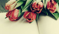 Bouquet of red tulips and open blank notebook Royalty Free Stock Photo