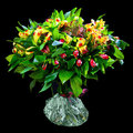 Bouquet of red and yellow alstroemeria Royalty Free Stock Photo