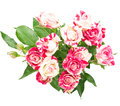 Bouquet of roses beautiful in isolation on white background Stock Images