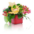Bouquet of roses, cloves and orchids arrangement Stock Images