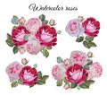 Bouquet of roses. Flowers set