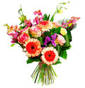 Bouquet of roses, gerberas and alsrtomerias Royalty Free Stock Image