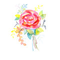 Bouquet of roses, watercolor, can be used as greeting card, invitation card for wedding, birthday and other holiday and summer bac Royalty Free Stock Photo