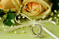 Bouquet of roses and wedding rings on green background Royalty Free Stock Image