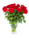 Bouquet of scarlet roses in vase isolated on white background Royalty Free Stock Images