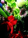 Bouquet a single red rose centres a flower arrangement Royalty Free Stock Photo