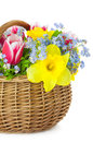 Bouquet of Spring Flowers in Basket  /  Stock Photos