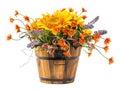 Bouquet Of Sun Flower