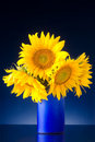 Bouquet of sunflowers in a blue vase Royalty Free Stock Photos