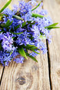 Bouquet on table blue spring flowers scylla Royalty Free Stock Photography