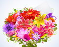 Bouquet of tender flowers Stock Photos