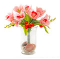 Bouquet of tulip and orchid in glass vase decorated with stone sea shell isolated on white Stock Image