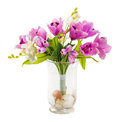 Bouquet of tulip and orchid in glass vase decorated with stone sea shell isolated on white Stock Images