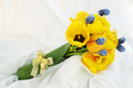 Bouquet tulips muscari bow Stock Photography