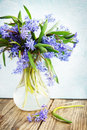Bouquet in a vase blue spring flowers scylla Stock Images