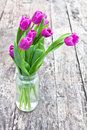 Bouquet of violet tulips on the oak brown table in a clear glass jar Royalty Free Stock Photo