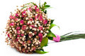 Bouquet wedding sec Image libre de droits