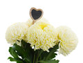 Bouquet of white mums isolated on background Royalty Free Stock Photo