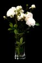 A bouquet of white roses in a vase low key vertical Stock Photos