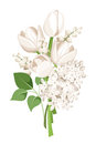 Bouquet of white tulips, lilac flowers and lily of the valley. Vector illustration.
