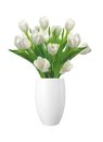 Bouquet Of White Tulips In Vas...