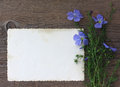 Bouquet of wild flowers and empty paper form on old background blue an wooden Stock Image