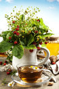 Bouquet of wild strawberry with herbal tea and honey Royalty Free Stock Photo