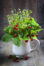 Bouquet of wild strawberry Royalty Free Stock Photo