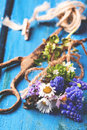 Bouquet of wildflowers and old rusty scissors over blue wooden background Stock Photo