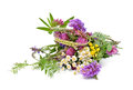 Bouquet of wildflowers wild flowers on a white background Royalty Free Stock Photo