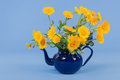 Bouquet yellow flowers on blue background Royalty Free Stock Photo