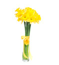 Bouquet yellow lent lily daffodil narcissus isolated white background Stock Photography