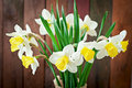 Bouquet of yellow narcissuses close up on a rustic wooden background Stock Images
