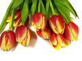 Bouquet of yellow and red tulip flowers Stock Photos